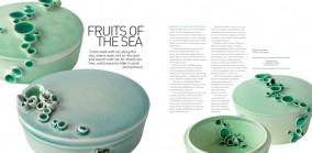 Fruits of The Sea, Profile of ceramist Lok Ming Fung, Spaces 2008